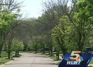 emerald ash borer image - WLWT Cincinnati News