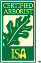 Hire a Certified Arborist