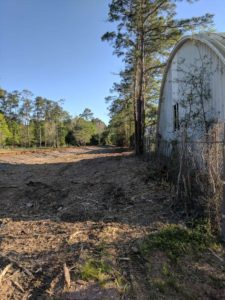 Parker land clearing services and scrub oak removal on Tree Service Parker